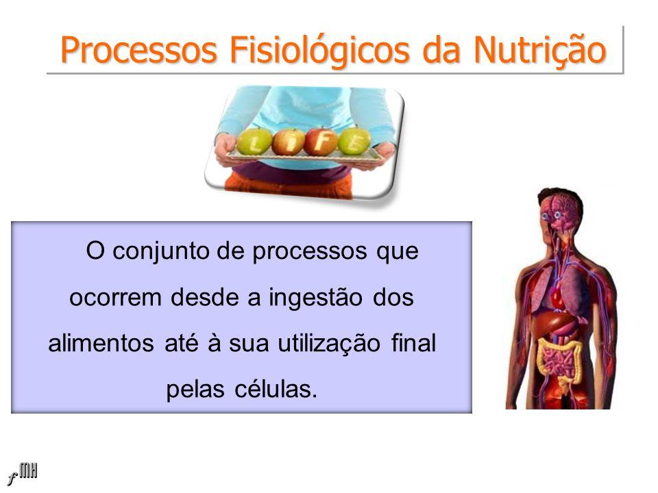 Processos Fisiológicos da Nutrição O conjunto de processos que ocorrem desde a ingestão dos alimentos até à sua utilização final pelas células.