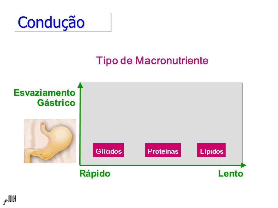 ConduçãoCondução Tipo de Macronutriente EsvaziamentoGástrico Rápido Lento ProteínasGlícidosLípidos