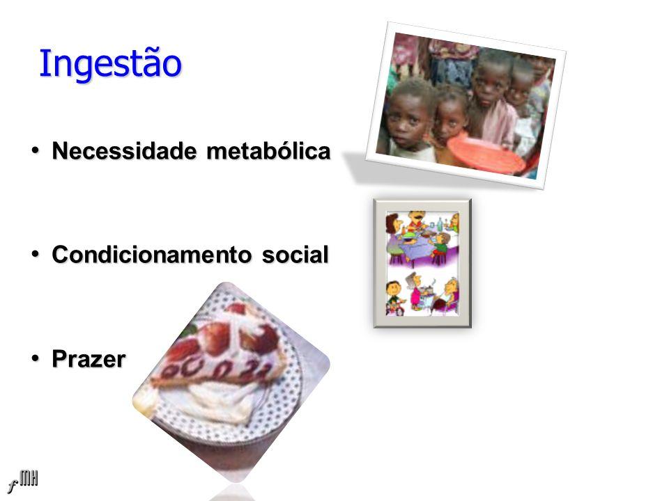 Ingestão Necessidade metabólica Necessidade metabólica Condicionamento social Condicionamento social Prazer Prazer
