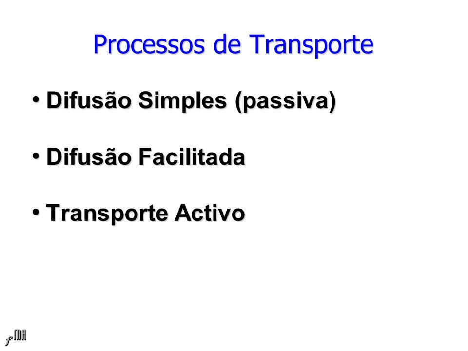 Processos de Transporte Difusão Simples (passiva) Difusão Simples (passiva) Difusão Facilitada Difusão Facilitada Transporte Activo Transporte Activo