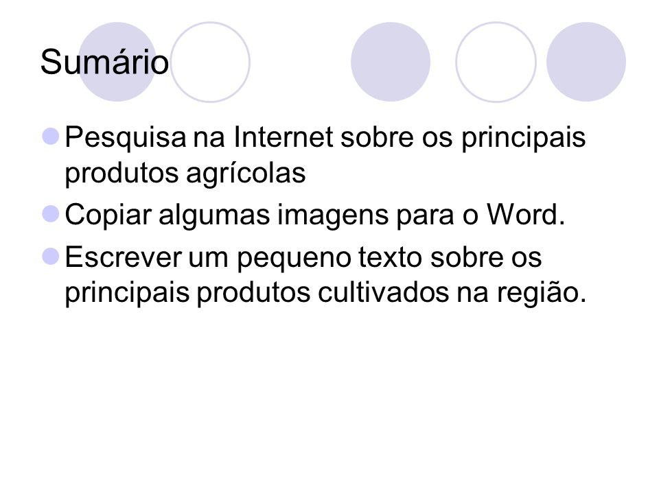 Sumário Pesquisa na Internet sobre os principais produtos agrícolas Copiar algumas imagens para o Word. Escrever um pequeno texto sobre os principais