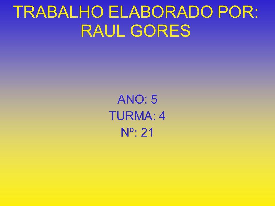 TRABALHO ELABORADO POR: RAUL GORES ANO: 5 TURMA: 4 Nº: 21