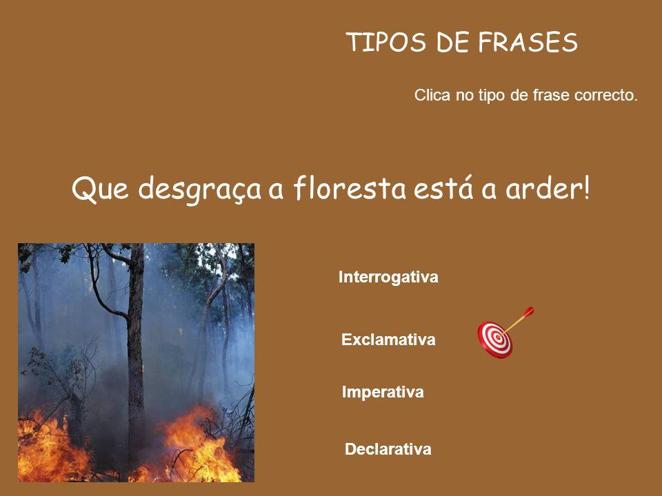 FORMAS DE FRASES AFIRMATIVA NEGATIVA A floresta tem arvoredos maravilhosos. A floresta não tem arvoredos maravilhosos.