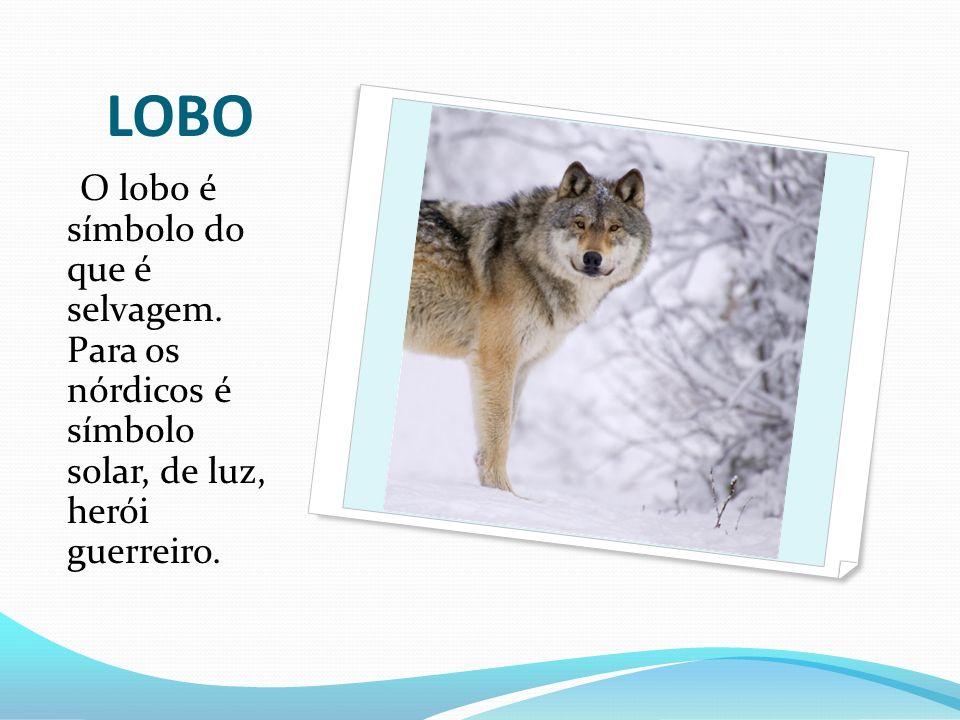 LOBO O lobo é símbolo do que é selvagem. Para os nórdicos é símbolo solar, de luz, herói guerreiro.