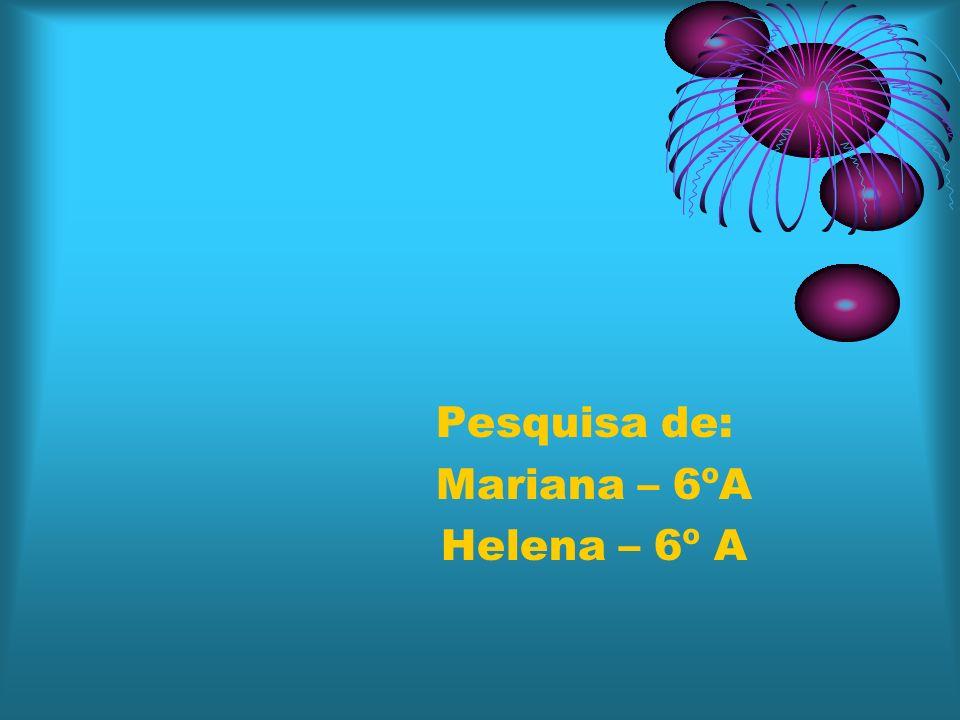 Pesquisa de: Mariana – 6ºA Helena – 6º A