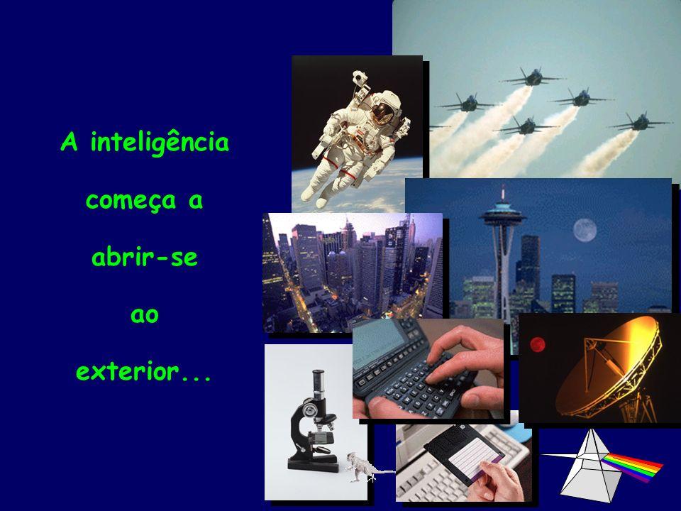 A inteligência começa a abrir-se ao exterior...