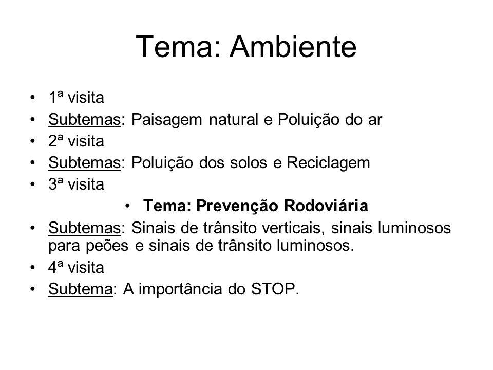 Tema: Ambiente 1ª visita Subtemas: Paisagem natural e Poluição do ar 2ª visita Subtemas: Poluição dos solos e Reciclagem 3ª visita Tema: Prevenção Rod