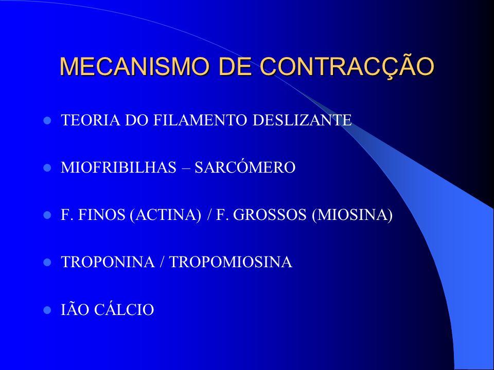 MECANISMO DE CONTRACÇÃO TEORIA DO FILAMENTO DESLIZANTE MIOFRIBILHAS – SARCÓMERO F. FINOS (ACTINA) / F. GROSSOS (MIOSINA) TROPONINA / TROPOMIOSINA IÃO