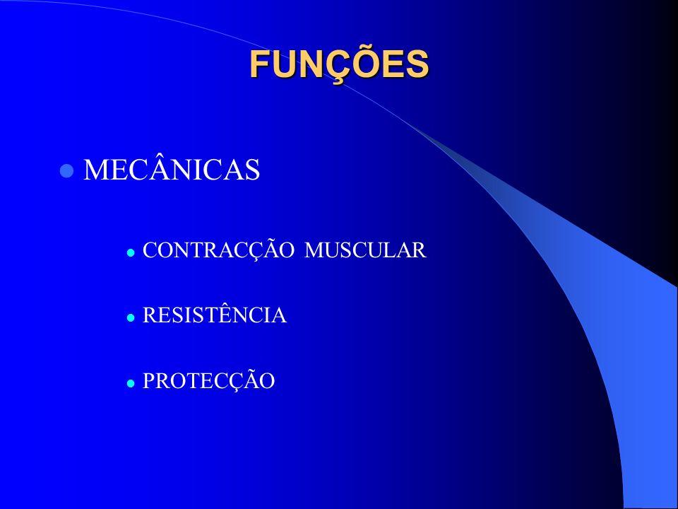 FUNÇÕES MECÂNICAS CONTRACÇÃO MUSCULAR RESISTÊNCIA PROTECÇÃO