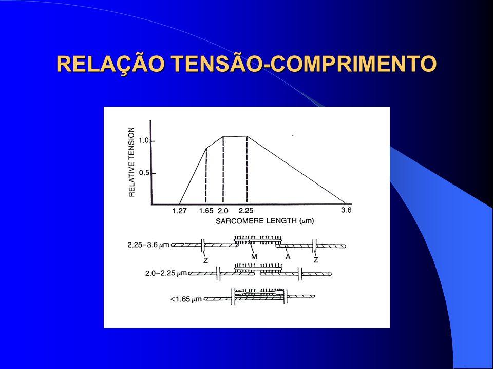 RELAÇÃO TENSÃO-COMPRIMENTO