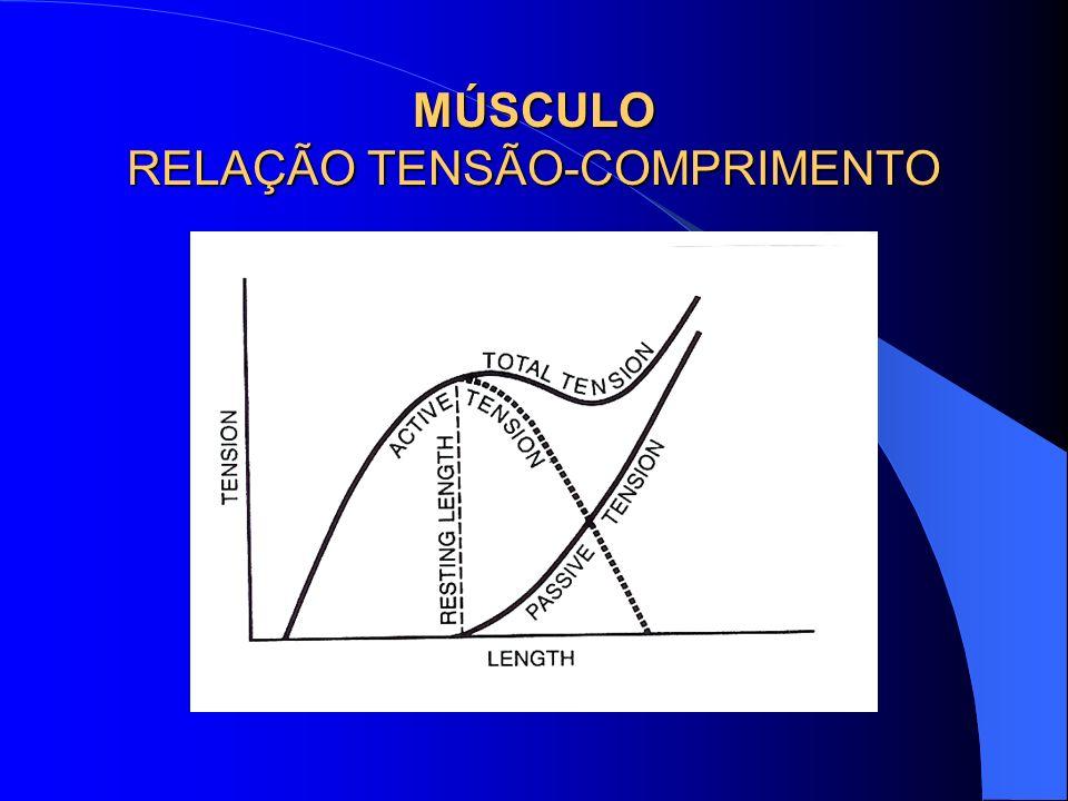 MÚSCULO RELAÇÃO TENSÃO-COMPRIMENTO