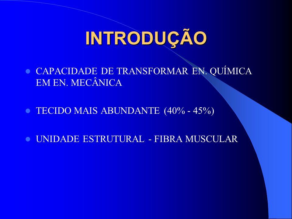 INTRODUÇÃO CAPACIDADE DE TRANSFORMAR EN. QUÍMICA EM EN. MECÂNICA TECIDO MAIS ABUNDANTE (40% - 45%) UNIDADE ESTRUTURAL - FIBRA MUSCULAR