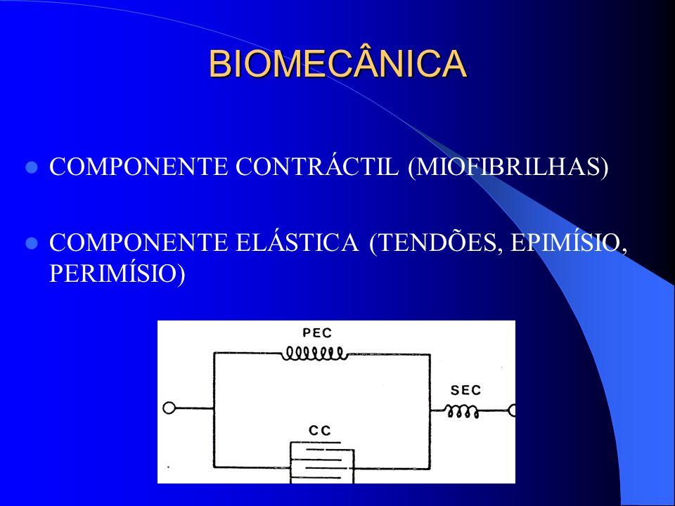 BIOMECÂNICA COMPONENTE CONTRÁCTIL (MIOFIBRILHAS) COMPONENTE ELÁSTICA (TENDÕES, EPIMÍSIO, PERIMÍSIO)