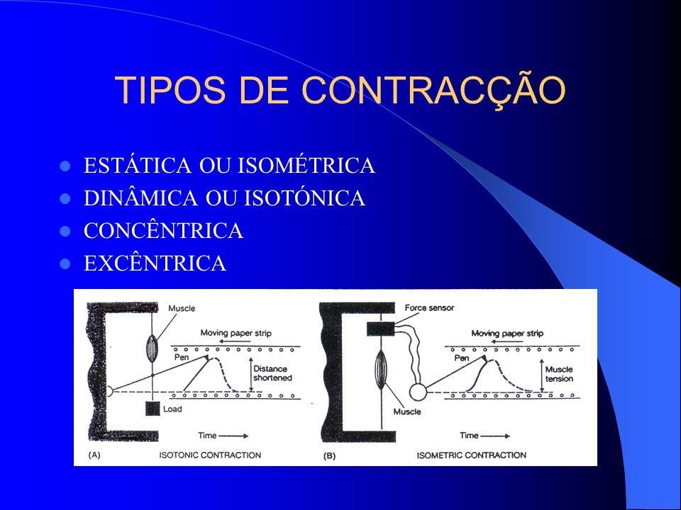 TIPOS DE CONTRACÇÃO ESTÁTICA OU ISOMÉTRICA DINÂMICA OU ISOTÓNICA CONCÊNTRICA EXCÊNTRICA