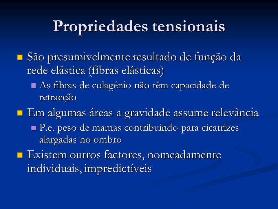 Propriedades tensionais São presumivelmente resultado de função da rede elástica (fibras elásticas) São presumivelmente resultado de função da rede el