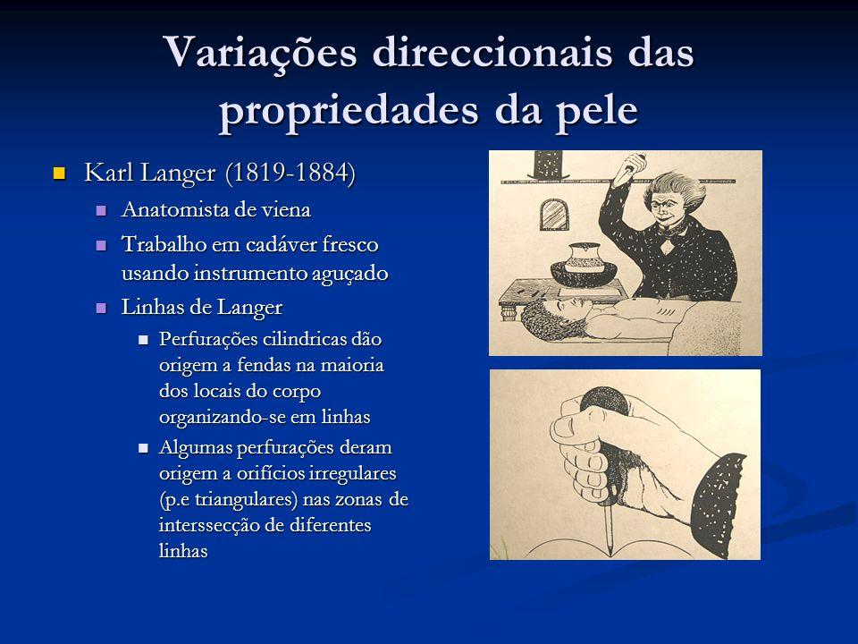 Variações direccionais das propriedades da pele Karl Langer (1819-1884) Karl Langer (1819-1884) Anatomista de viena Anatomista de viena Trabalho em ca
