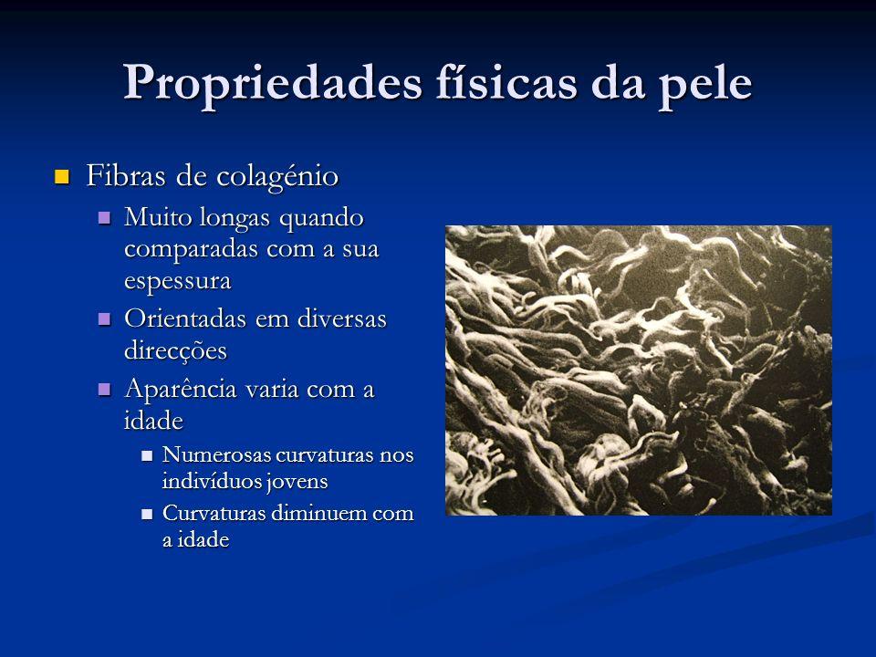 Propriedades físicas da pele Fibras de colagénio Fibras de colagénio Muito longas quando comparadas com a sua espessura Muito longas quando comparadas