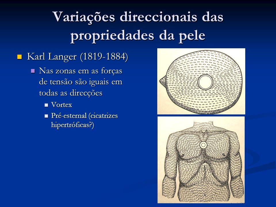 Variações direccionais das propriedades da pele Karl Langer (1819-1884) Karl Langer (1819-1884) Nas zonas em as forças de tensão são iguais em todas a