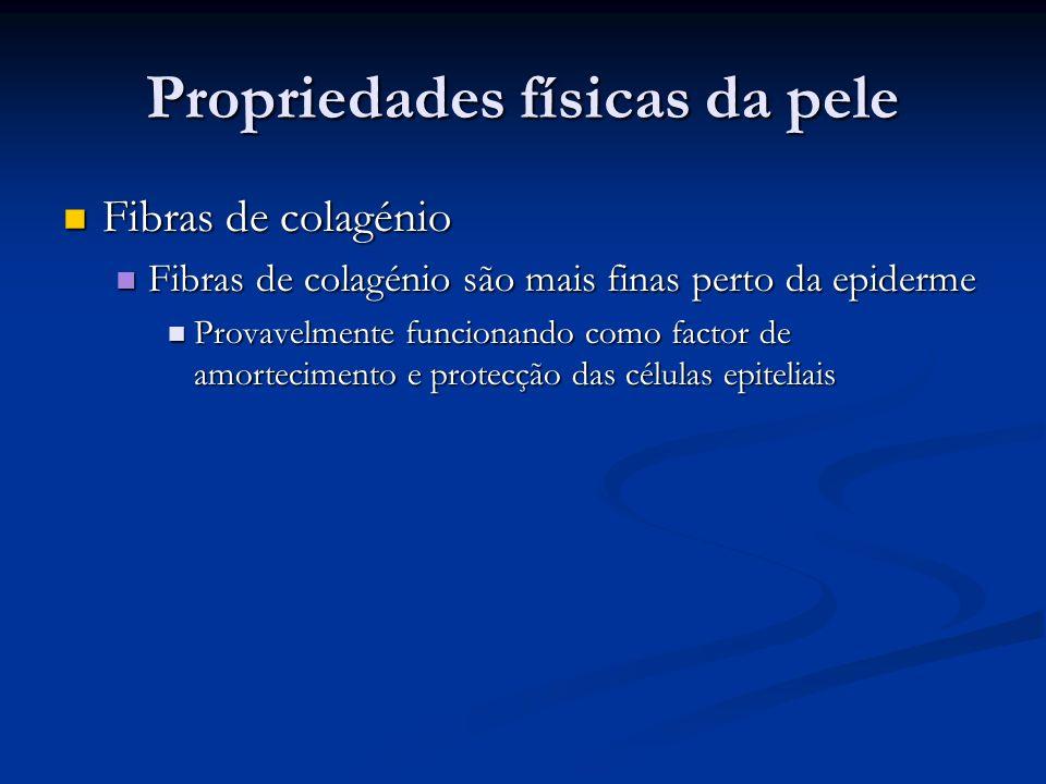 Propriedades físicas da pele Fibras de colagénio Fibras de colagénio Fibras de colagénio são mais finas perto da epiderme Fibras de colagénio são mais