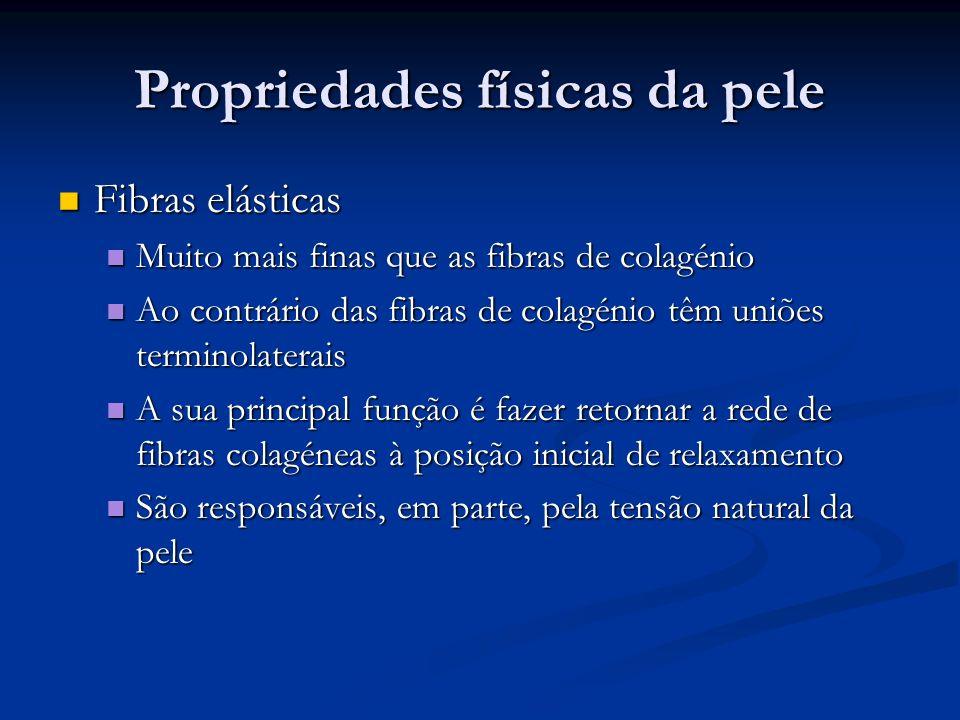 Propriedades físicas da pele Meio intermédio Meio intermédio O sistema requer um meio de lubrificação O sistema requer um meio de lubrificação Mucopolissacáridos Mucopolissacáridos Disperso em torno das fibras de colagénio e fibras elásticas Disperso em torno das fibras de colagénio e fibras elásticas As fibras de colagénio não existem despidas mas sempre revestidas de mucopolissacáridos separando umas fibras das outras As fibras de colagénio não existem despidas mas sempre revestidas de mucopolissacáridos separando umas fibras das outras