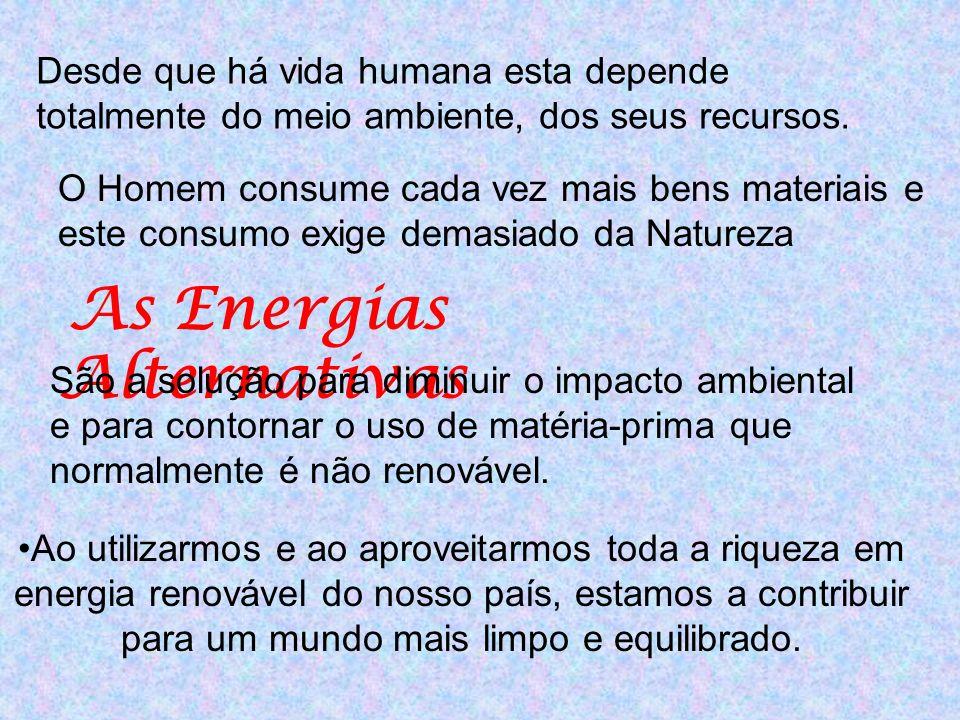 Desde que há vida humana esta depende totalmente do meio ambiente, dos seus recursos. Ao utilizarmos e ao aproveitarmos toda a riqueza em energia reno
