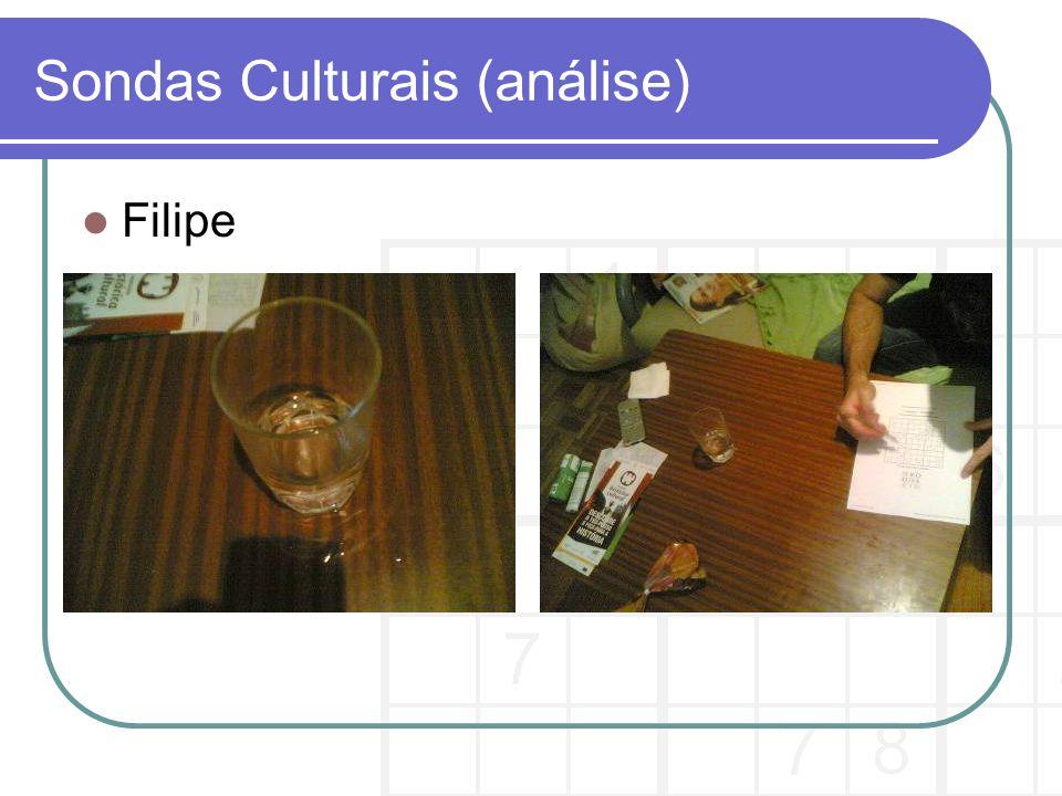 Sondas Culturais (análise) Filipe
