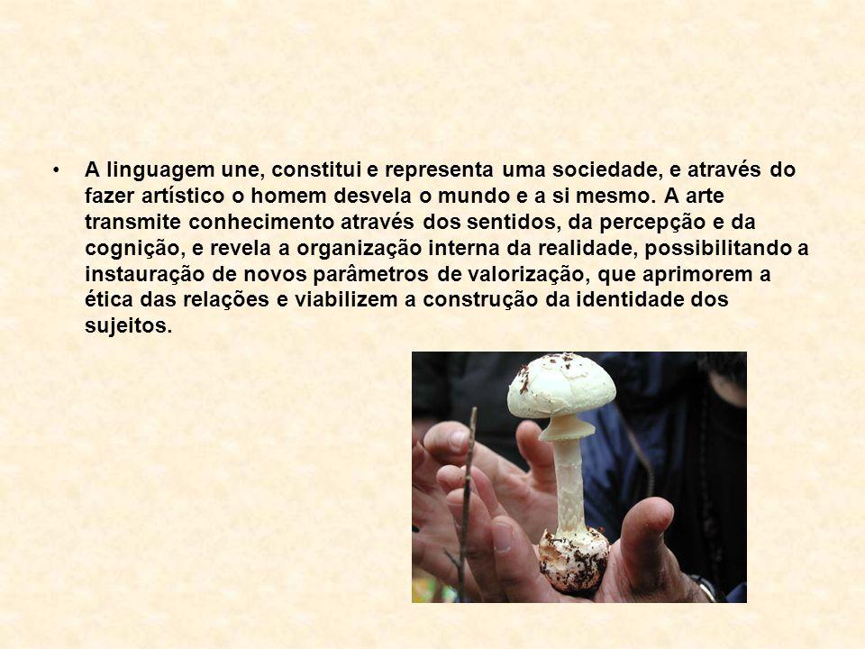 A linguagem une, constitui e representa uma sociedade, e através do fazer artístico o homem desvela o mundo e a si mesmo. A arte transmite conheciment