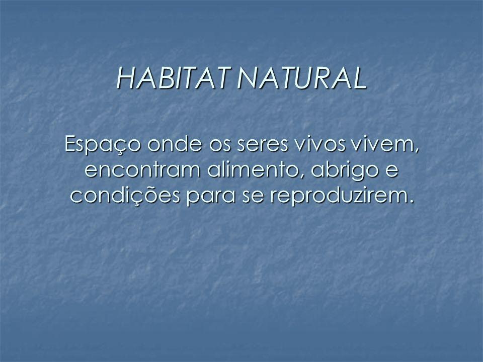 HABITAT NATURAL Espaço onde os seres vivos vivem, encontram alimento, abrigo e condições para se reproduzirem.