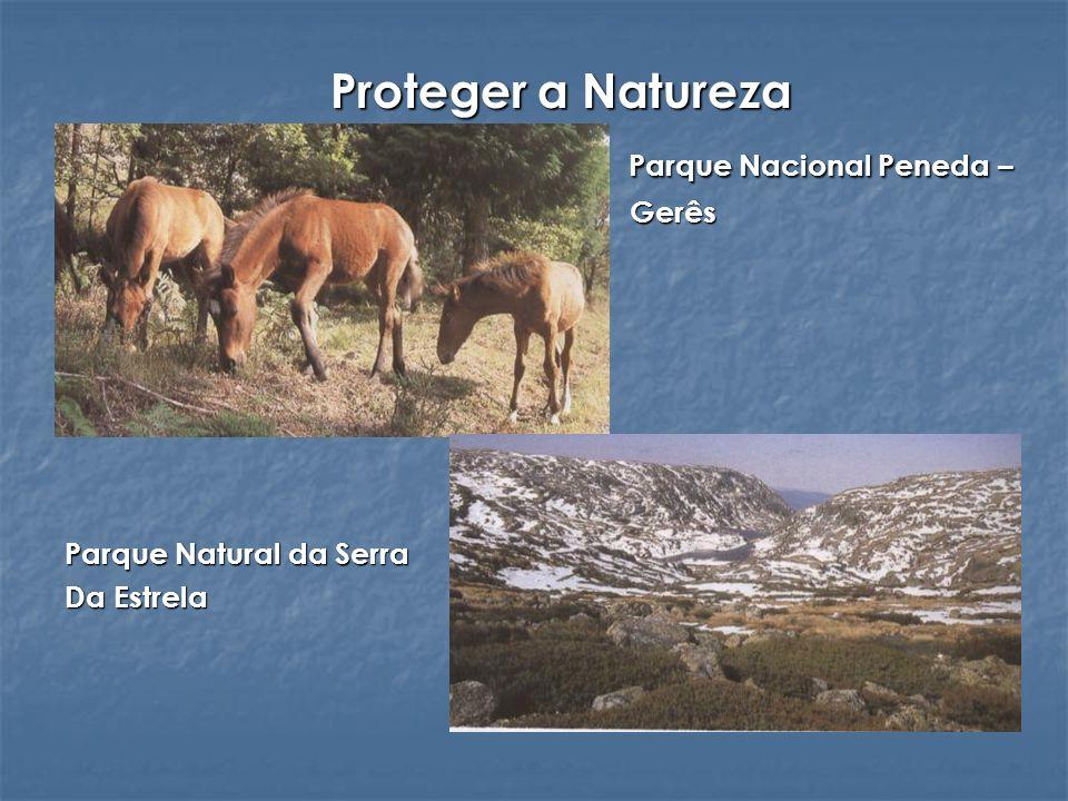 Proteger a Natureza Parque Nacional Peneda – Parque Nacional Peneda – Gerês Gerês Parque Natural da Serra Da Estrela
