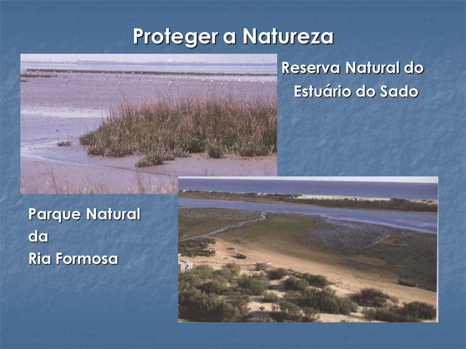 Proteger a Natureza Reserva Natural do Reserva Natural do Estuário do Sado Estuário do Sado Parque Natural da Ria Formosa