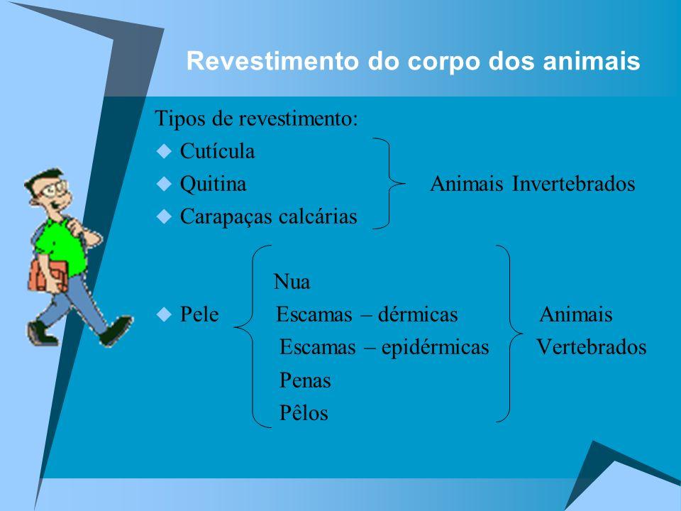 Revestimento do corpo dos animais Tipos de revestimento: Cutícula Quitina Animais Invertebrados Carapaças calcárias Nua Pele Escamas – dérmicas Animai