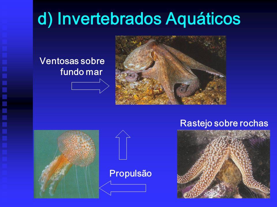 d) Invertebrados Aquáticos Ventosas sobre fundo mar Propulsão Rastejo sobre rochas