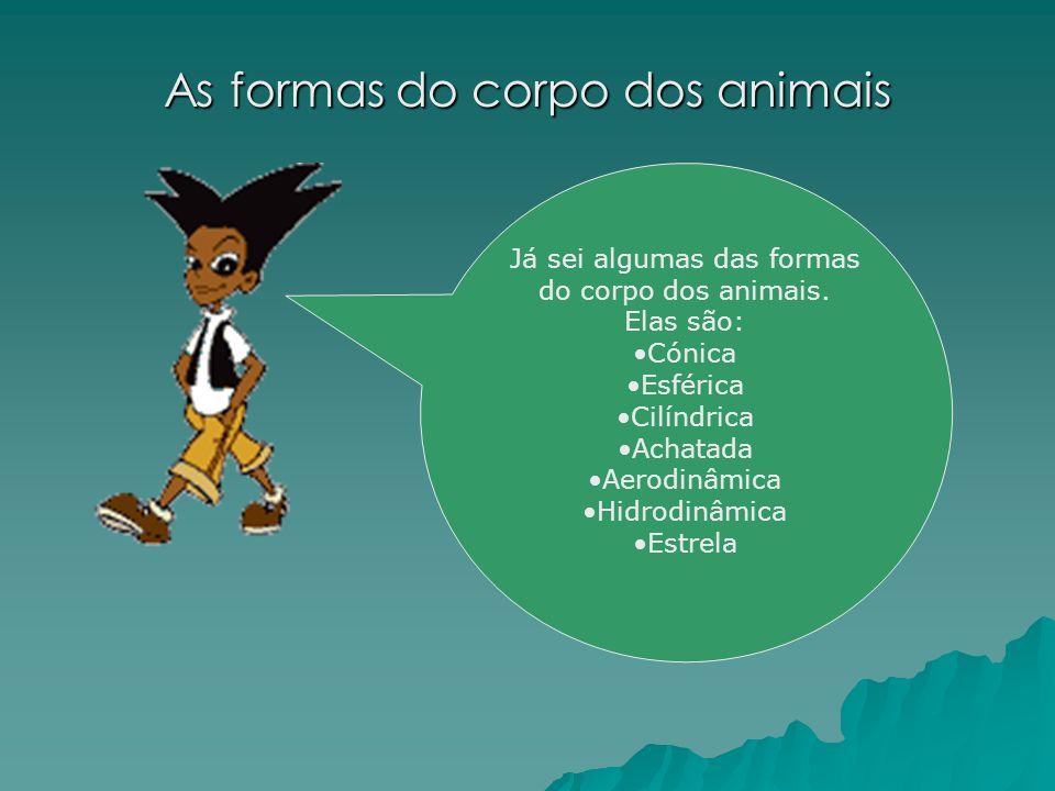 As formas do corpo dos animais Já sei algumas das formas do corpo dos animais.