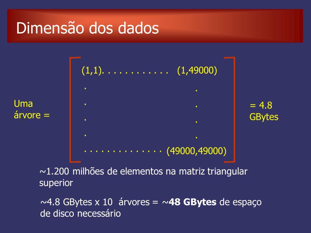 Dimensão dos dados Uma árvore = (1,1)............ (1,49000)......... (49000,49000) = 4.8 GBytes ~4.8 GBytes x 10 árvores = ~48 GBytes de espaço de dis