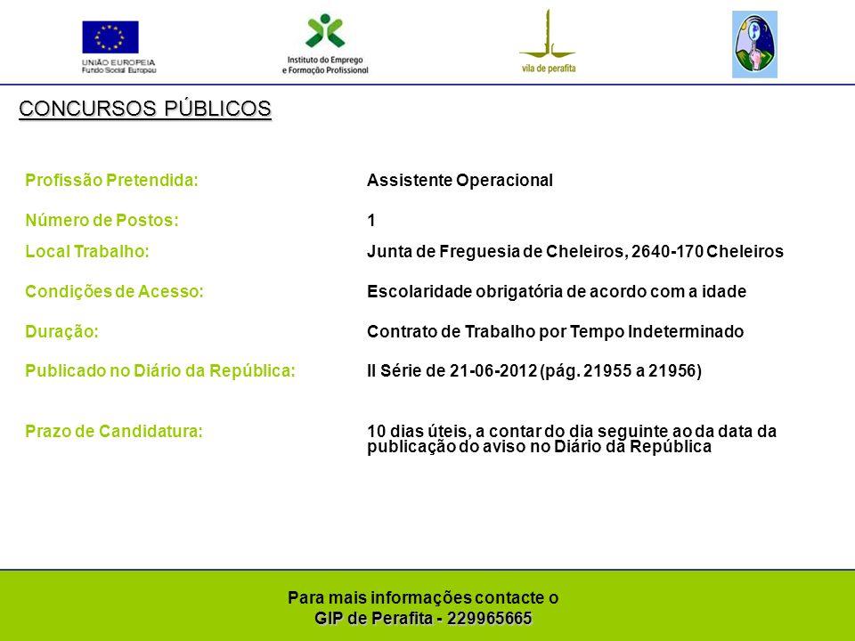 GIP de Perafita - 229965665 Para mais informações contacte o GIP de Perafita - 229965665 CONCURSOS PÚBLICOS Profissão Pretendida: Assistente Operacional (Área de vigilância, apoio e transporte de crianças) Número de Postos: 1 Local Trabalho: Junta de Freguesia de Pinheiro de Coja, 3420-192 Pinheiro de Coja Condições de Acesso:Escolaridade obrigatória de acordo com a idade e carta de condução na categoria D e certificado válido de Motorista para transporte colectivo de crianças Duração: Contrato de Trabalho A Termo Resolutivo Certo Publicado no Diário da República:II Série de 21-06-2012 (pág.