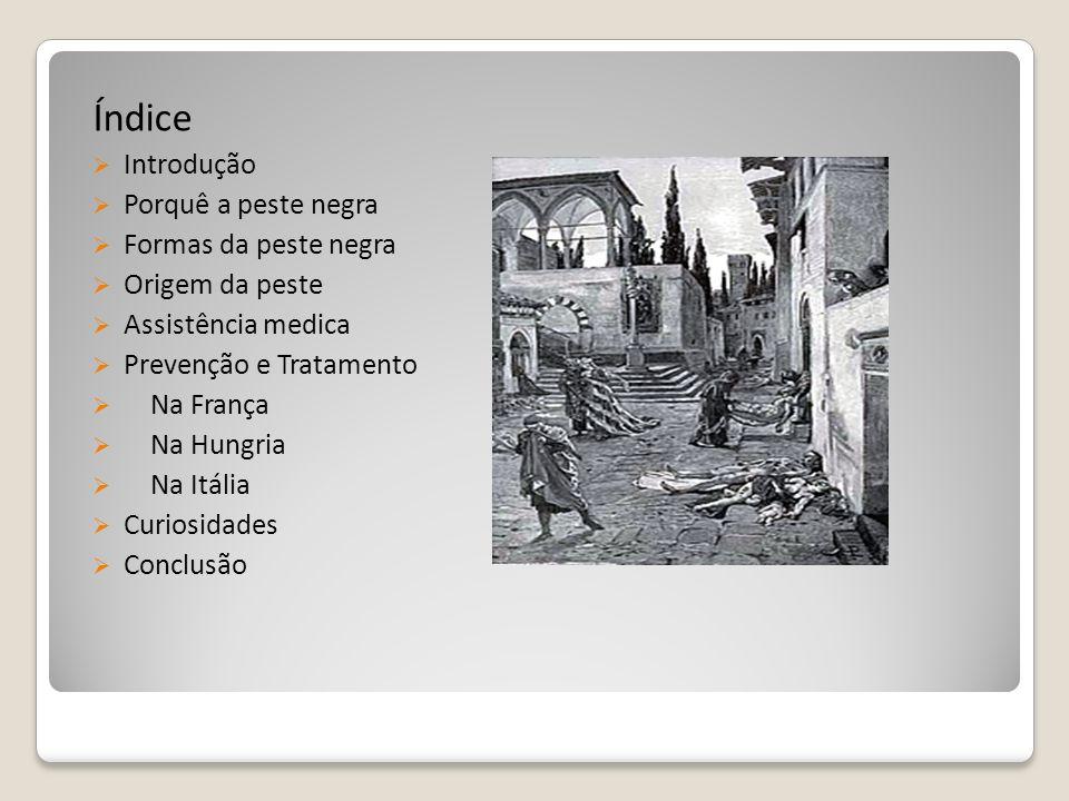 Índice Introdução Porquê a peste negra Formas da peste negra Origem da peste Assistência medica Prevenção e Tratamento Na França Na Hungria Na Itália