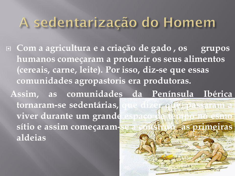 Com a agricultura e a criação de gado, os grupos humanos começaram a produzir os seus alimentos (cereais, carne, leite).