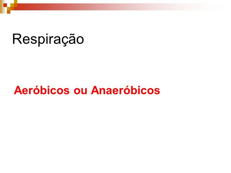 Doença do Sono (Flagelado) Agente etiológico: Trypanosoma gambiensis Hospedeiro Intermediário: Mosca Tsé-Tsé (Glossina palpalis) Hospedeiro Definitivo: Homem Sintomas: Sonolència e torpor devido as lesões no sistema nervoso (Letargia).