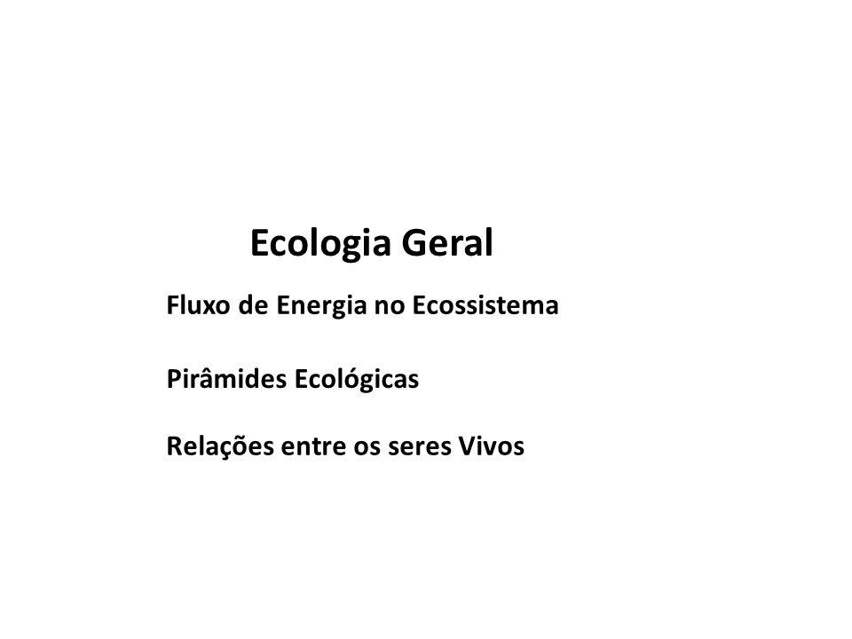 Ecologia Geral Fluxo de Energia no Ecossistema Pirâmides Ecológicas Relações entre os seres Vivos