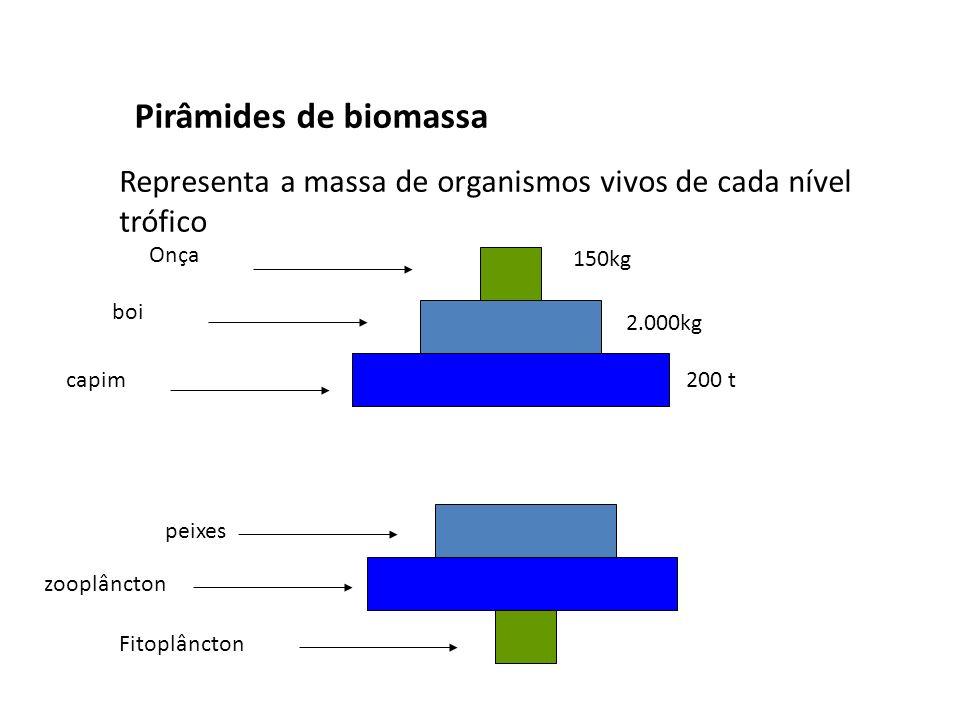 Pirâmides de biomassa Representa a massa de organismos vivos de cada nível trófico capim boi Onça 150kg 2.000kg 200 t Fitoplâncton zooplâncton peixes