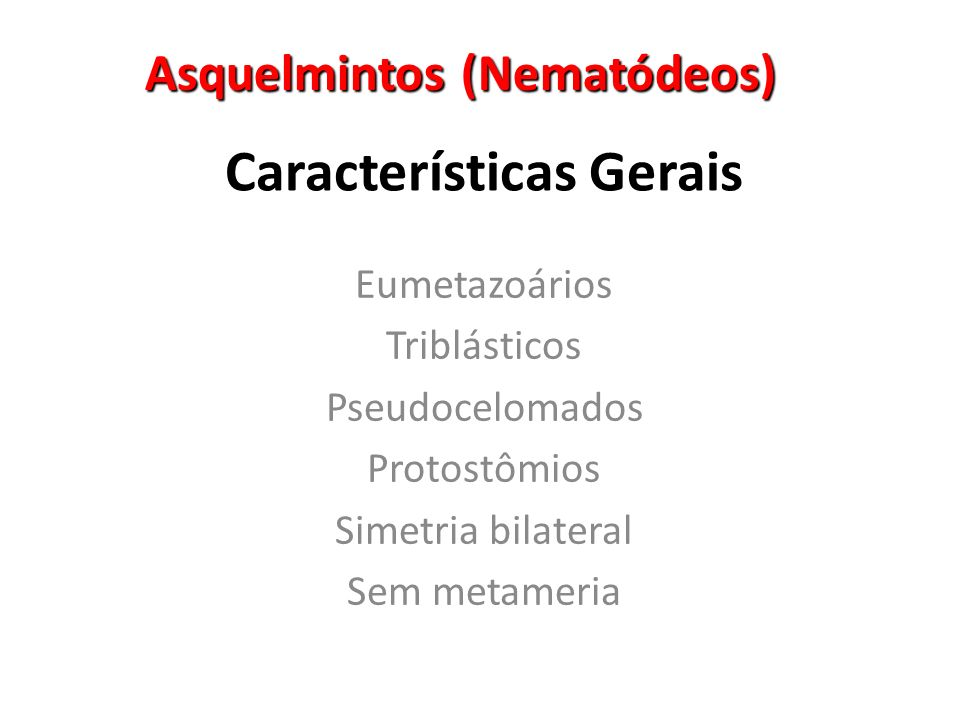 Ascaris lumbricoides NEMATÓDEOS Ascaridíase ou Lombriga