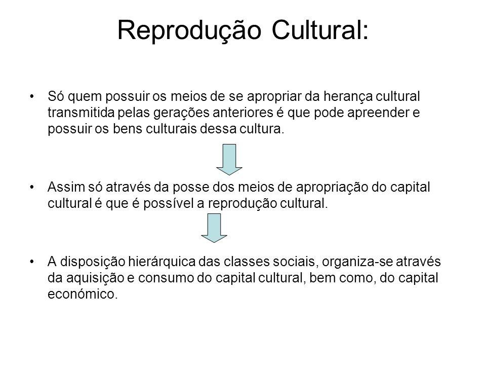 Reprodução Cultural: Só quem possuir os meios de se apropriar da herança cultural transmitida pelas gerações anteriores é que pode apreender e possuir