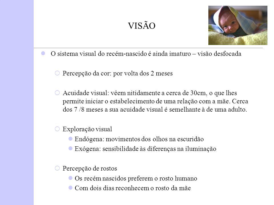 VISÃO O sistema visual do recém-nascido é ainda imaturo – visão desfocada Percepção da cor: por volta dos 2 meses Acuidade visual: vêem nitidamente a