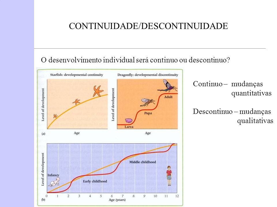 CONTINUIDADE/DESCONTINUIDADE O desenvolvimento individual será continuo ou descontinuo? Continuo – mudanças quantitativas Descontinuo – mudanças quali