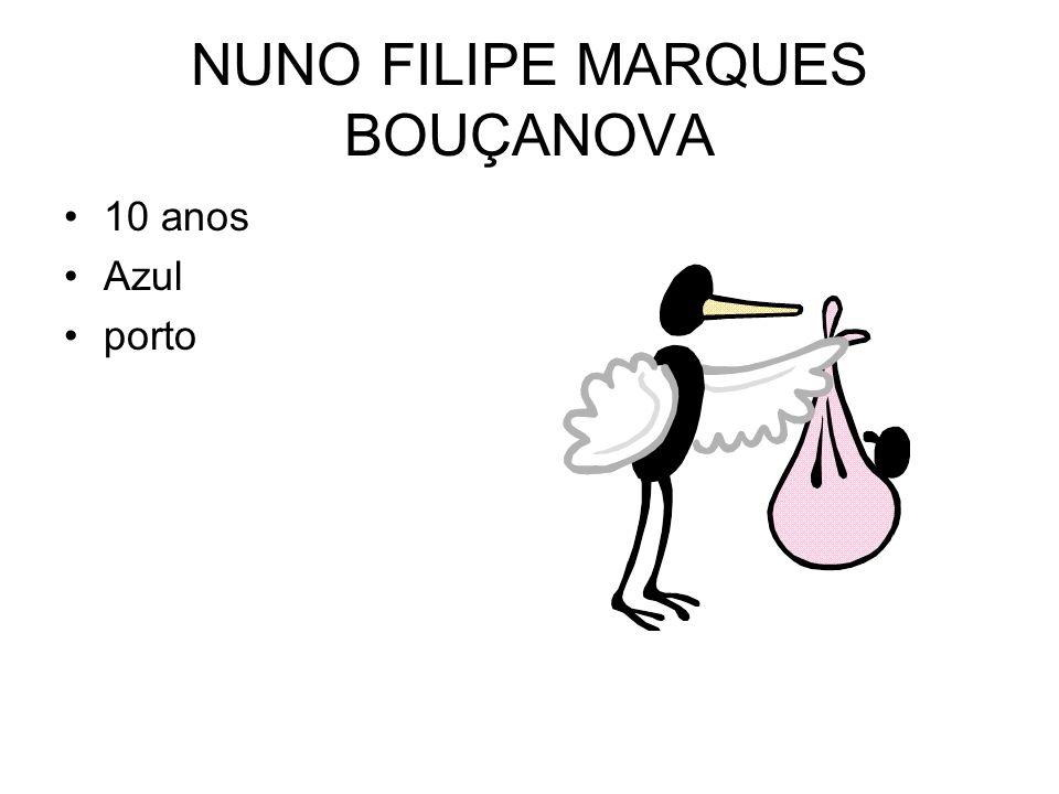 NUNO FILIPE MARQUES BOUÇANOVA 10 anos Azul porto