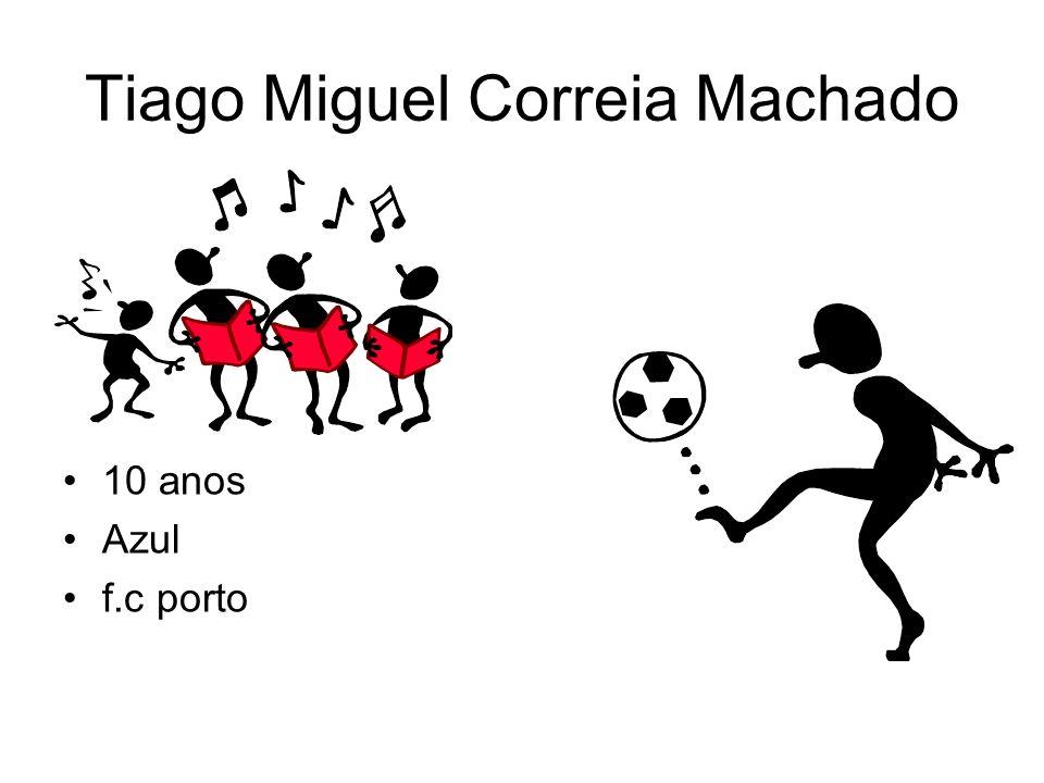 Tiago Miguel Correia Machado 10 anos Azul f.c porto