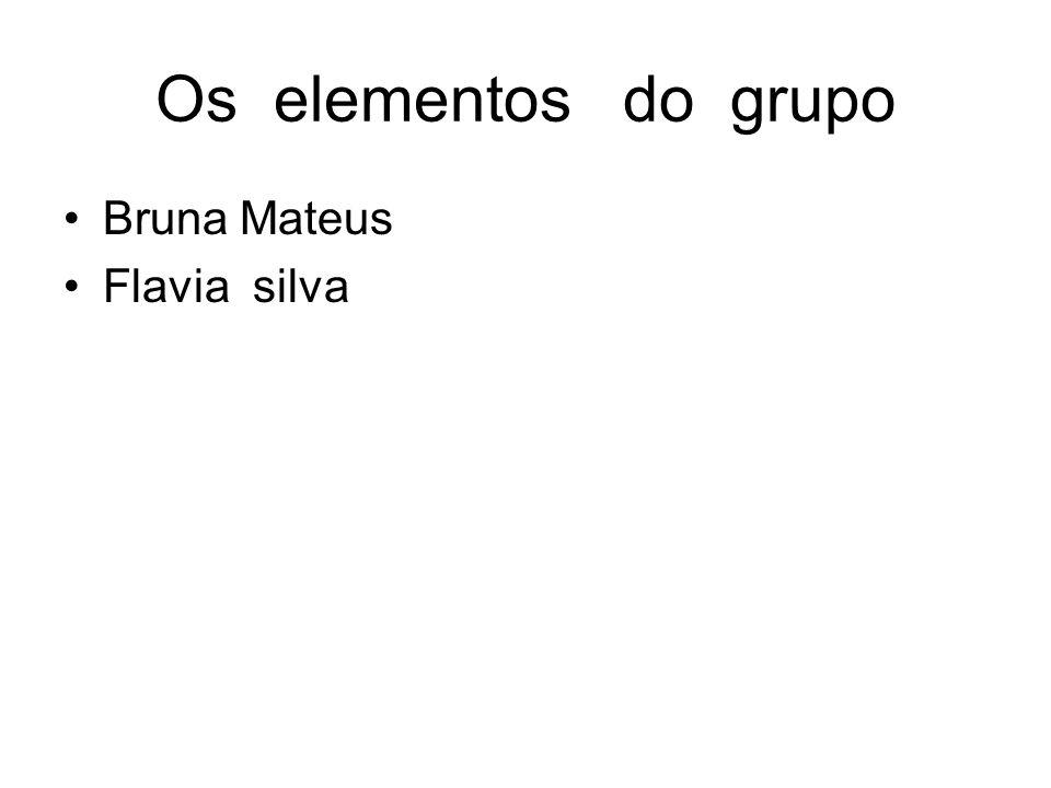 Os elementos do grupo Bruna Mateus Flavia silva