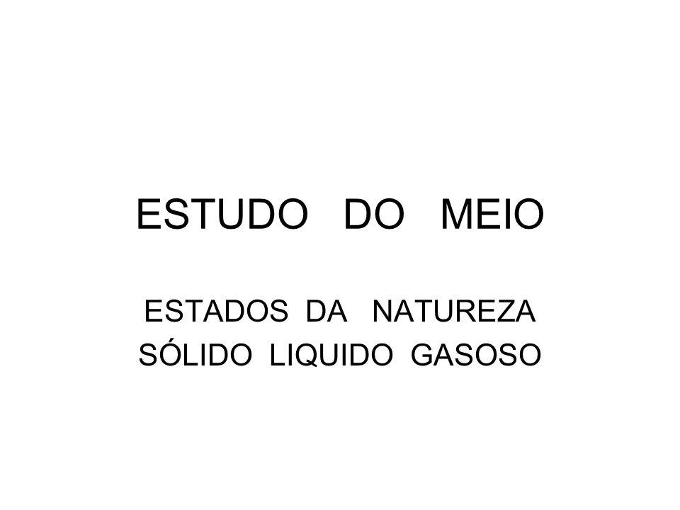 ESTUDO DO MEIO ESTADOS DA NATUREZA SÓLIDO LIQUIDO GASOSO
