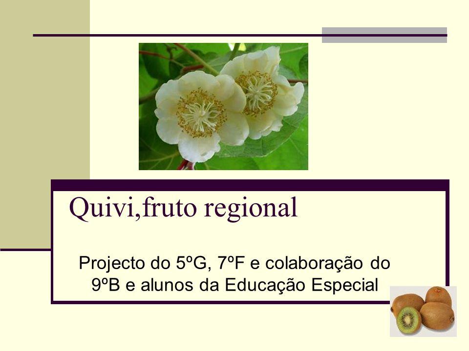 Quivi,fruto regional Projecto do 5ºG, 7ºF e colaboração do 9ºB e alunos da Educação Especial