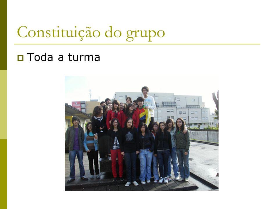 Constituição do grupo Toda a turma